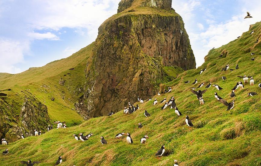 Aktiviteter på Færøerne - grottetur med Rib-båd