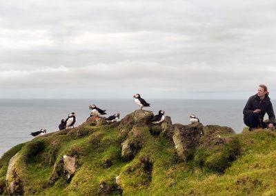 Søpapegøjer - lunder på Færøerne